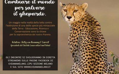 Appuntamento in diretta streaming.  Cambiare il mondo per salvare il ghepardo